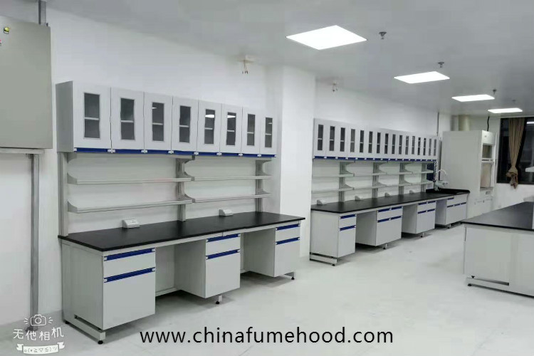 Customized Wall Chemistry Lab Furniture With Reagent Shelf Resistance Acid